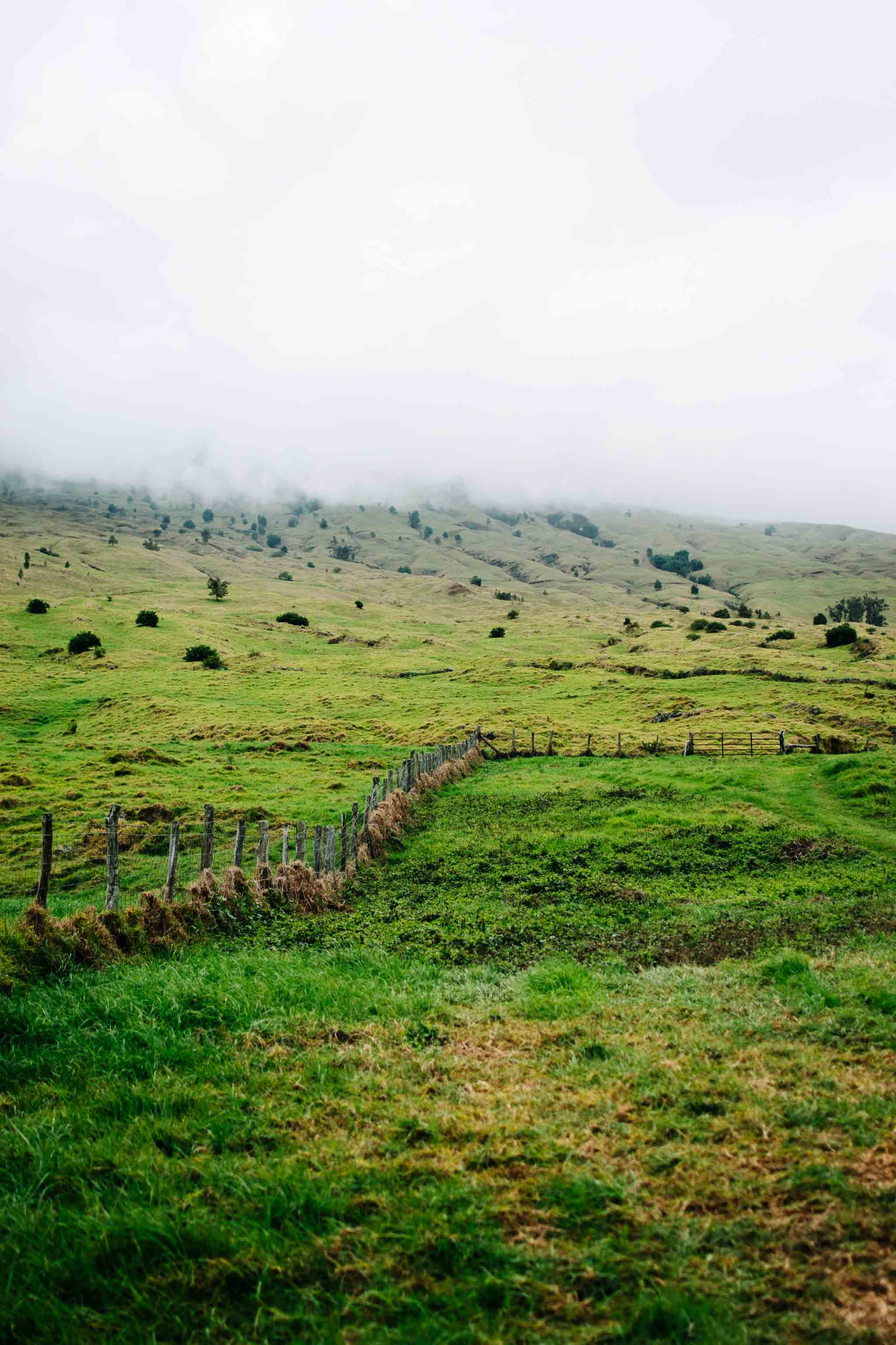 thompson ranch road maui