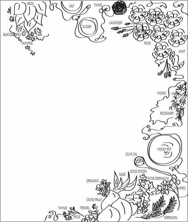 First Sketch Kale & Caramel Cookbook Cover