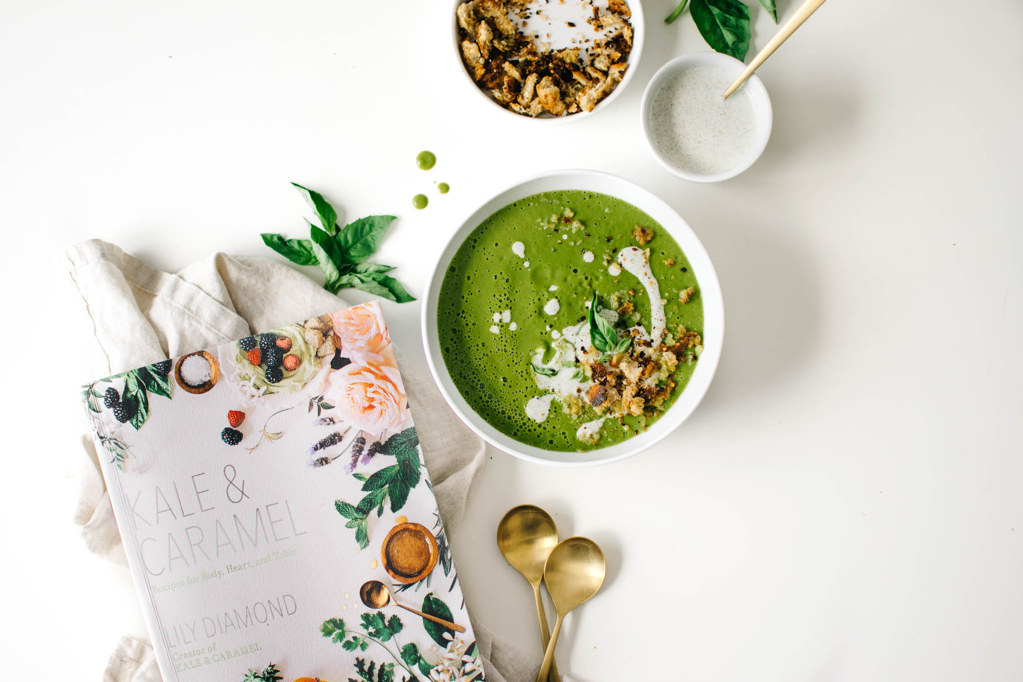 Zucchini basil soup from kale caramel cookbook a vitamix zucchini basil soup from kale caramel cookbook a vitamix giveaway forumfinder Choice Image