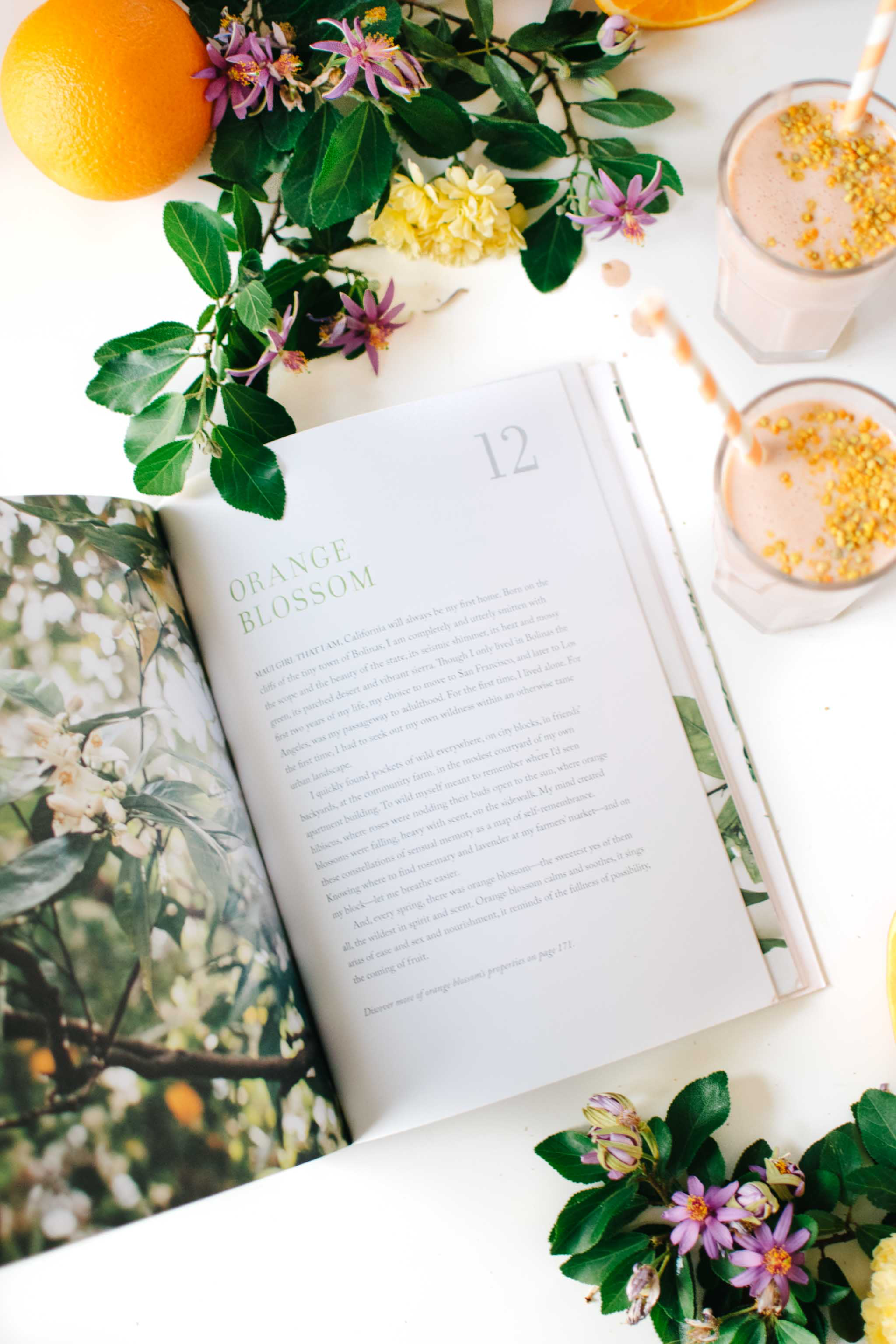 Orange Blossom Chapter from the Kale & Caramel Cookbook